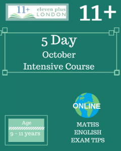 5 Day Intensive 11+ October Course (ONLINE)