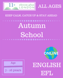 Autumn school: English EFL