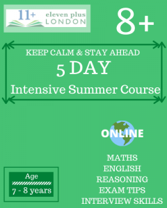 5 Day Intensive 8+ Summer Course (ONLINE)