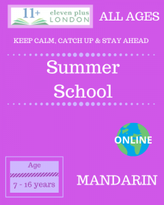 Summer school: Mandarin