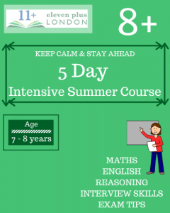 5 Day Intensive 8+ Summer Course