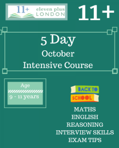5 Day Intensive 11+ October Course