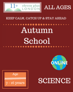 Autumn school: SCIENCE
