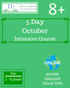 5 Day Intensive 8+ October Course