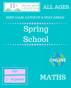 Spring school: MATHS