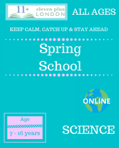 Spring school: SCIENCE