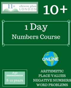 1 Day 10+ Numbers Course (ONLINE)
